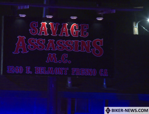 Savage Assassins