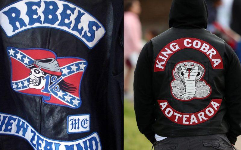 The Rebels vs King Cobra