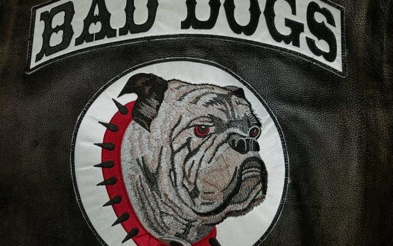 Bad Dogs MC
